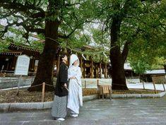 森厳な杜の中に鎮座する明治神宮