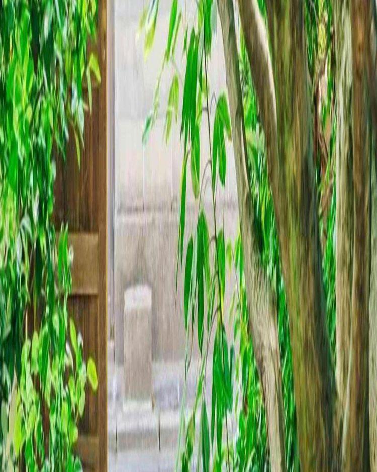 年中緑に包まれた庭園と貸切感を堪能できるプライベート空間