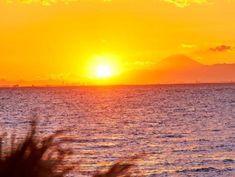 会場からは時に富士山もお目見え