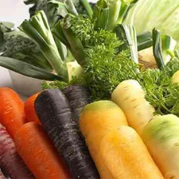地元野菜や厳選素材を使用