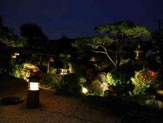 目の前に広がる日本庭園