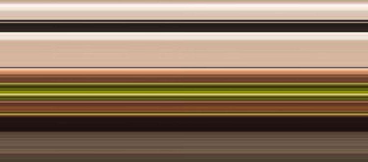 『料理第一優先』本格フレンチでおもてなし美食ウェディング