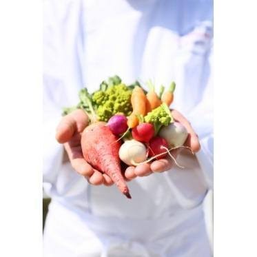 青山フェアリーハウス 七色畑と言われているくらい見た目も綺麗な鎌倉野菜で素材を大切に