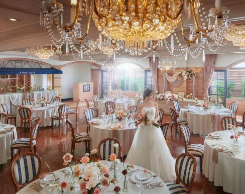 エルセルモ広島の画像3