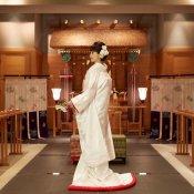 【本格的な和婚が叶う!】無料ハーフコース試食&神殿見学・見積相談フェア
