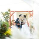 【結婚式延期料保証!】ウイルス感染予防対策選べる個室×安心安全2万円相当試食