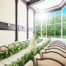 【初見学の方へ】森の大聖堂×フルコース試食×ギフト券3千円