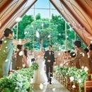 【10大特典!BIGフェア】森チャペル見学×特選牛フィレ試食