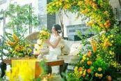 【水曜限定】豪華10大特典×豪華ランチ付×1日1組貸切体感!
