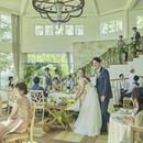 【今季最大Bigフェア】豪華5大特典×オマール海老&和牛試食