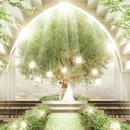 【リニューアル記念*】緑溢れるNEWチャペル体験×フォワグラ試食